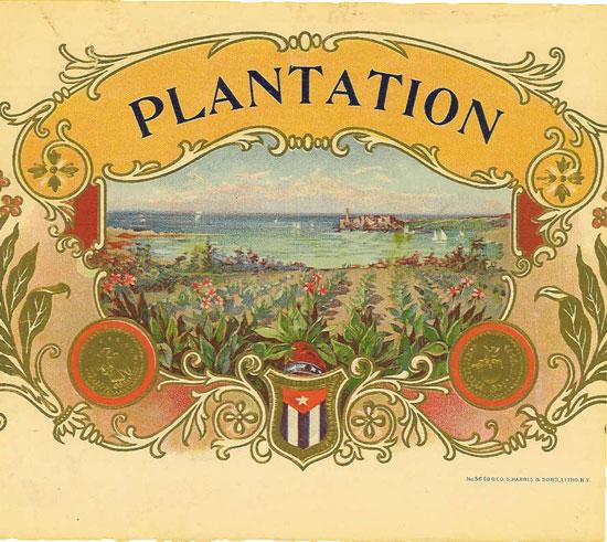 Cerebro plantation original antique label art for Catalogue plantation